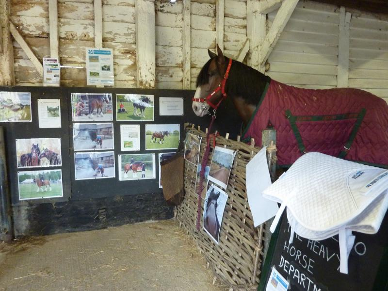 Jun 2013 Kids Out Day at Wimpole Hall and Farm - 27 Horses