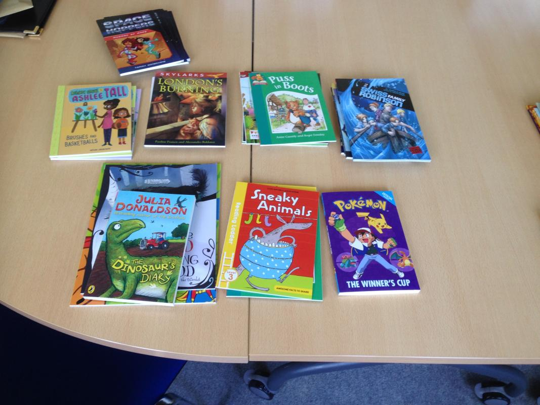 Rotary helps local schools expand their Banded Books selection - Some of the books we funded for Hook Junior School.