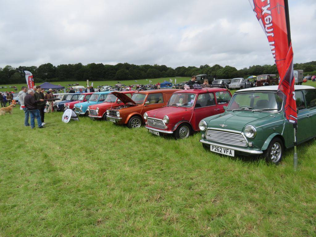 Senlac Classic Car Show and Craft Fayre -