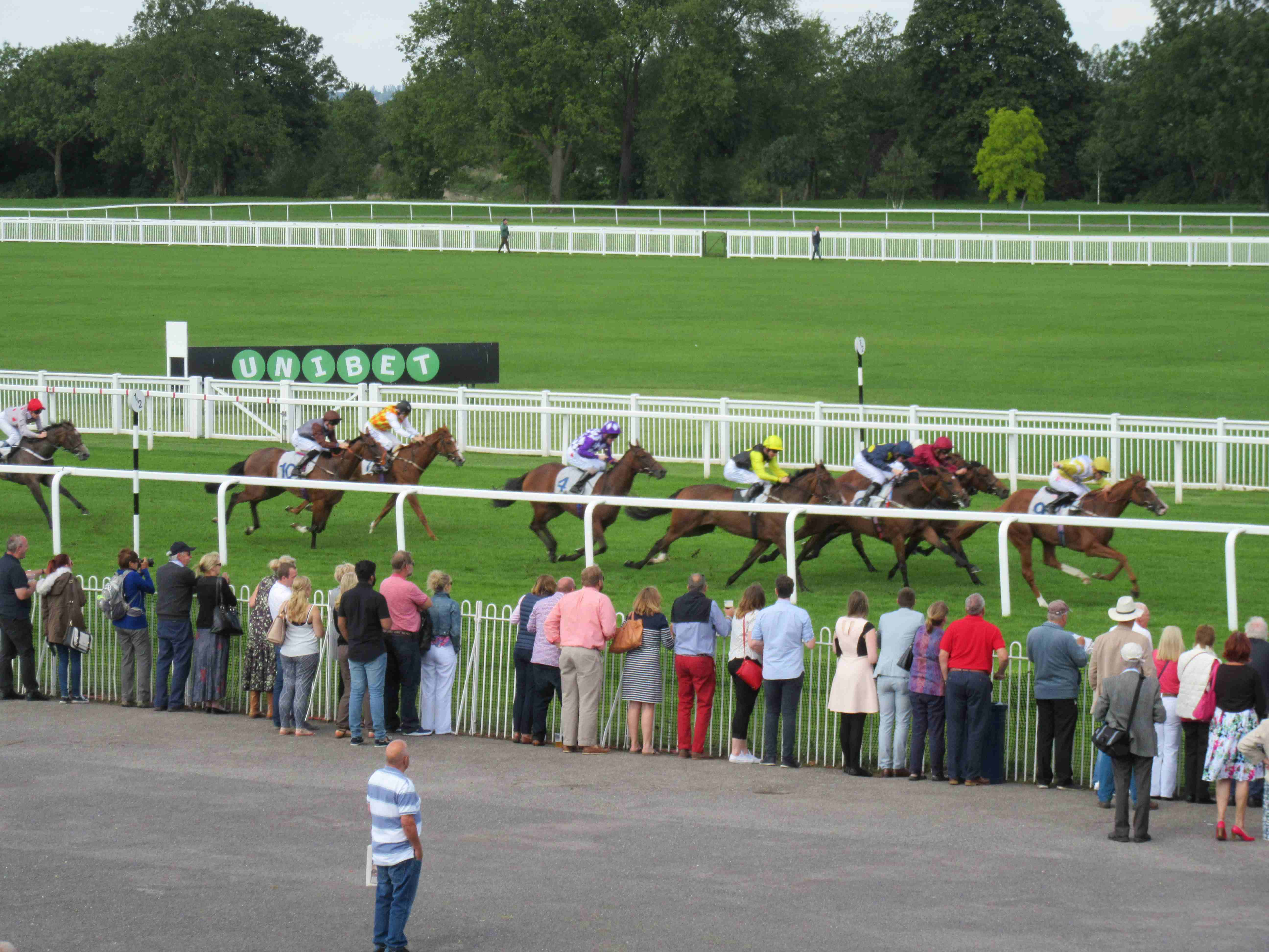 Some of the fun we have - A day at the Races