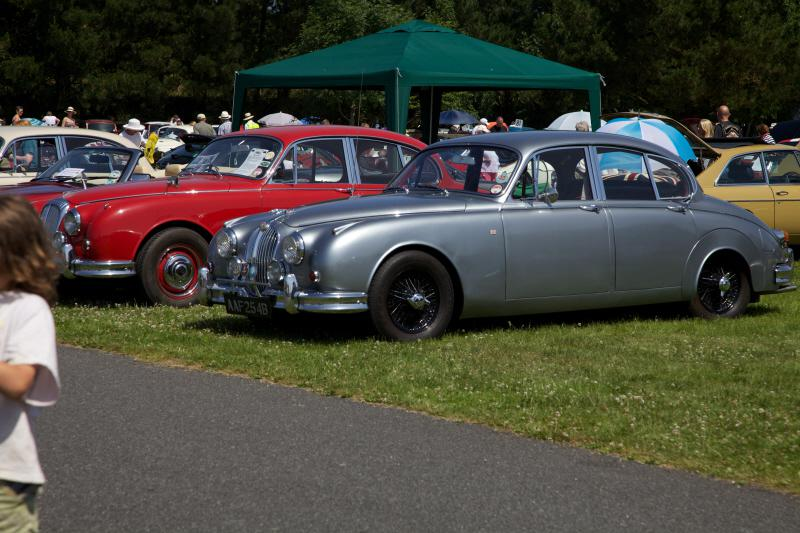 Wheels 2013 - Report and Slide Show - A selection of Jaguars