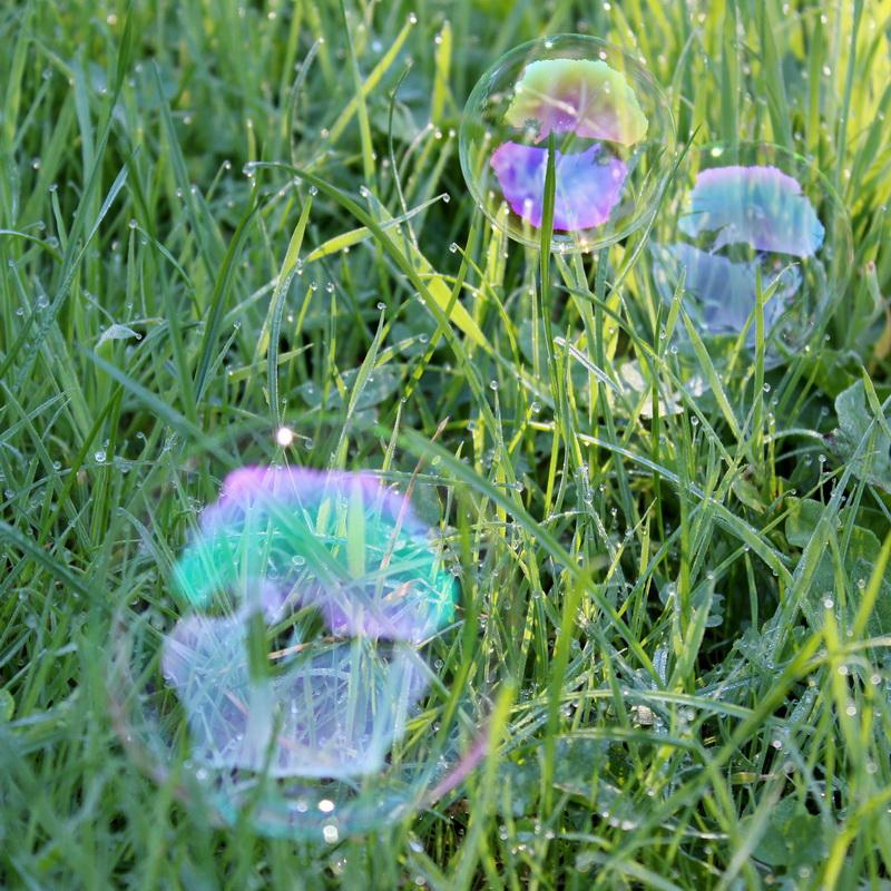 2016-17 Young Photographer Competition Results - Dartmouth Academy, RC of Dartmouth - I have tried to capture the reflections in the bubbles and the dewdrops in the grass. This image also shows how light reflecting and shadow changes the shades of green. I was also looking at the bubbles' composition