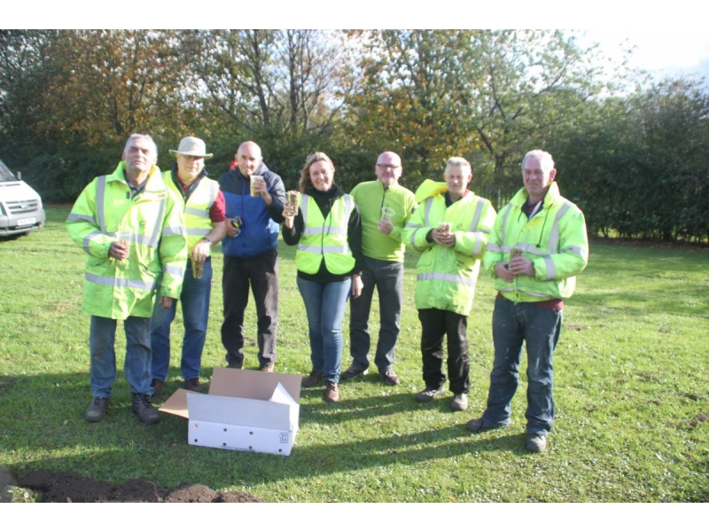 2017 Purple 4 Polio - End Polio Now - Bishop Auckland Rotary Club Crocus Planting 2017 04