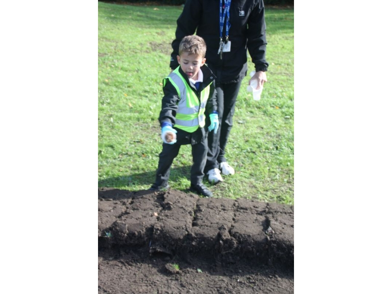 2017 Purple 4 Polio - End Polio Now - Bishop Auckland Rotary Club Crocus Planting 2017 07