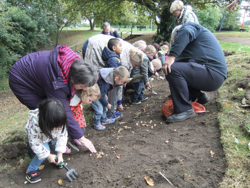 Growing Together to End Polio Now - Purple4Polio Crocus planting at Braybrooke Rec with Garth Under 5s