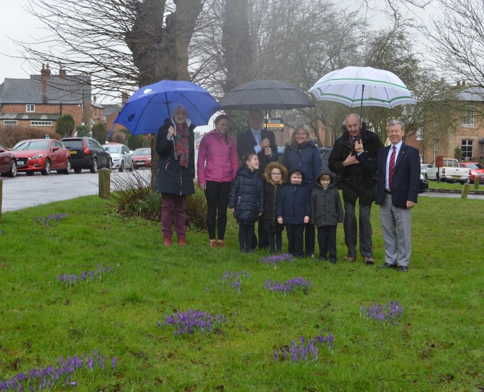 Purple 4 Polio Campaign October 2017 to Spring 2018 - The first sighting of our purple crocuses! They emerged a couple of days ago - here they're being admired by Rotarians, Villagers, and some of the children who helped plant them.