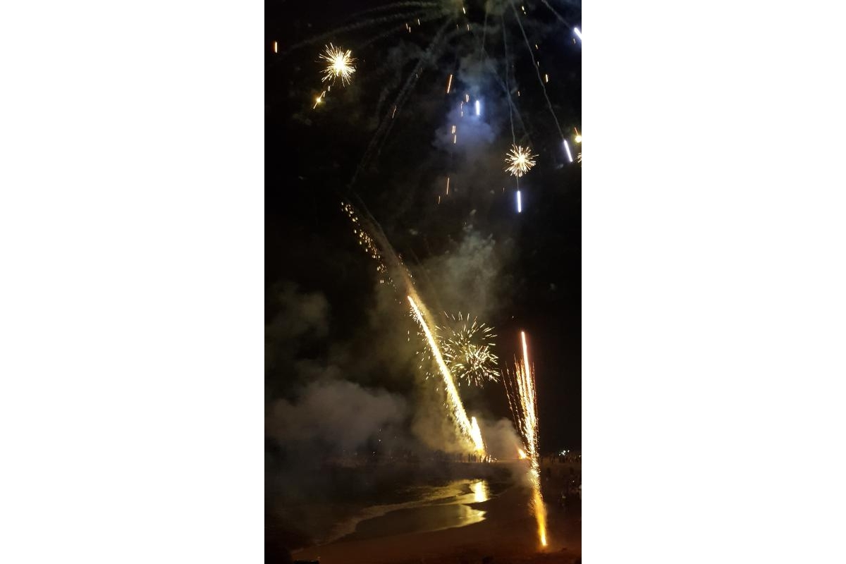 District Governor's Newsletter - January 2019 - and of course there were Fireworks to bring the New Year in