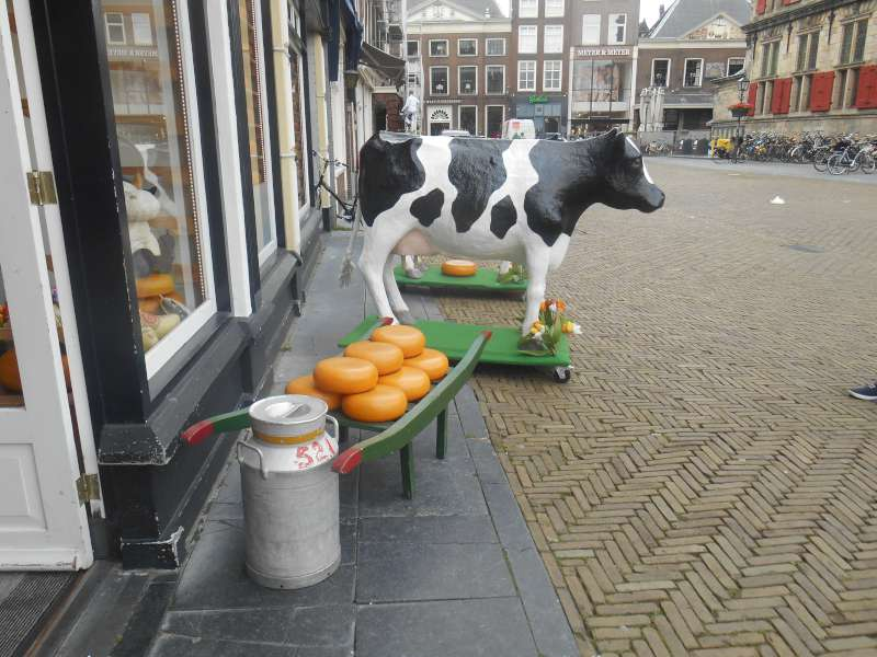 Our Raid on Delft - DSCN2384-800