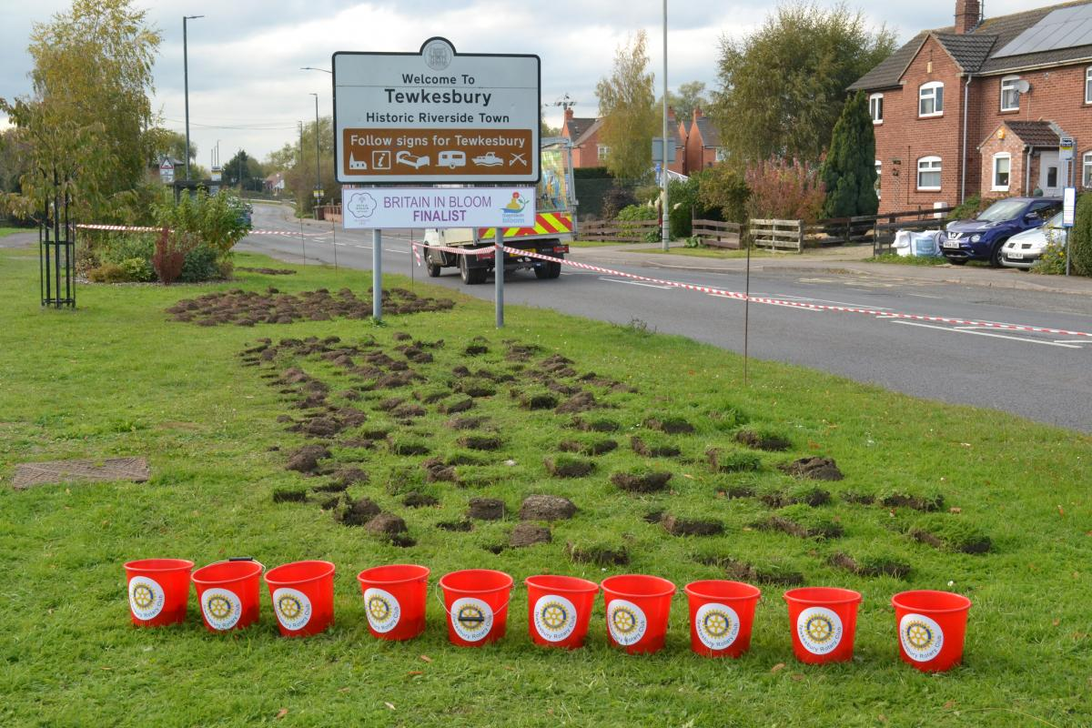 Annual planting of crocuses with the help of local primary school children. - Holes on Ashchurch Road ready and waiting to receive the crocus corms!