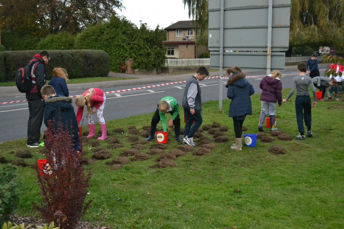 Annual planting of crocuses with the help of local primary school children. - Tirlebrook School pupils hard at work, doing their bit to promote 'End Polio Now!'