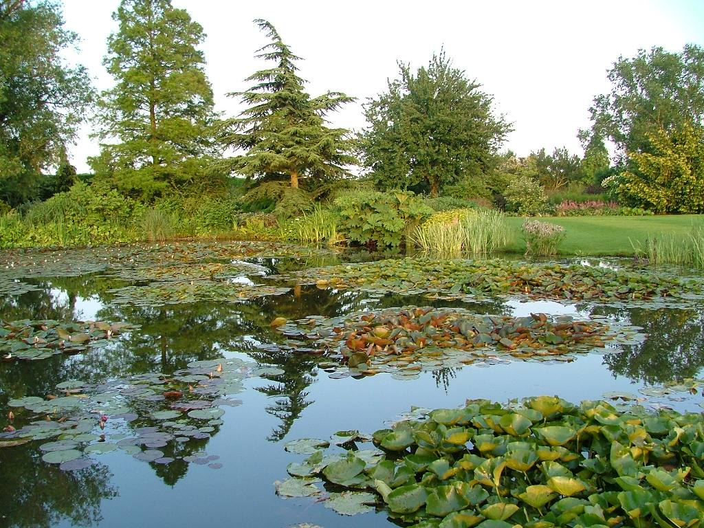 Around our District - Ponds at Hyde Hall