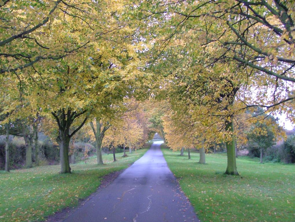 Around our District - An Autumn approach to New Hall