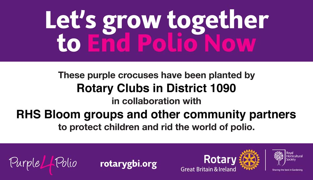 Growing Together to End Polio Now - Each site can be  markedwith the specially designed Purple4Polio sign from the RIBI Purple4Polio web pages