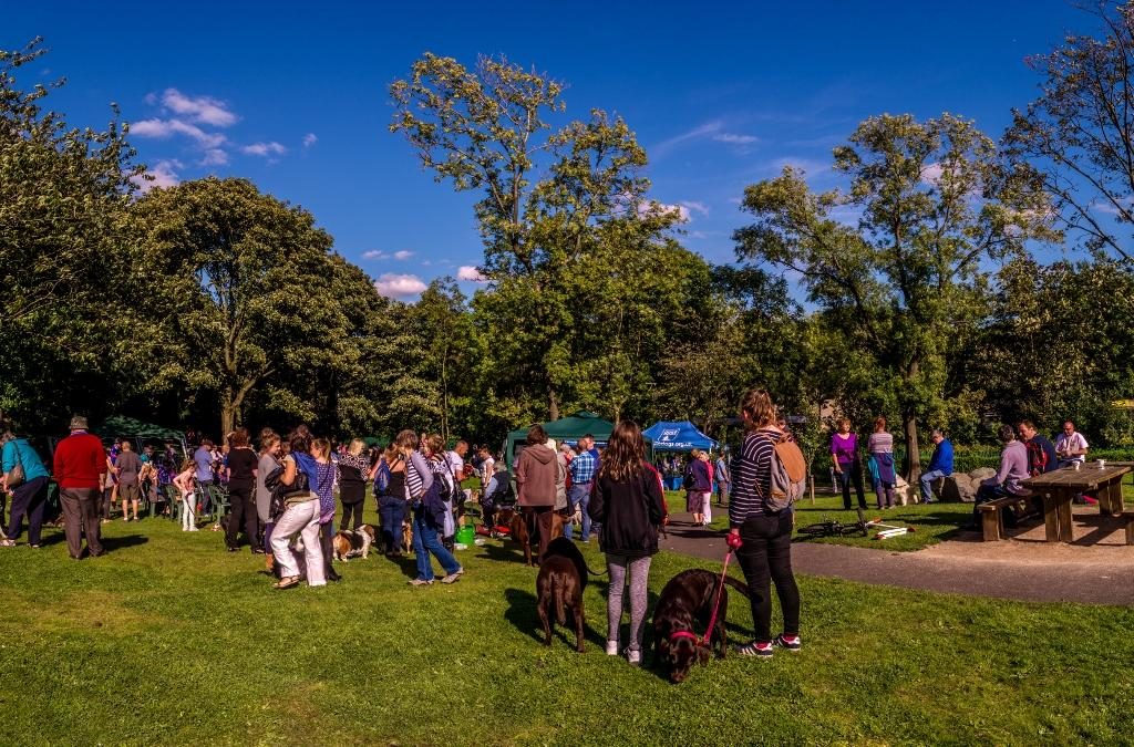 Dog Walkers Parade - A scene showing people enjoying the afternoon.