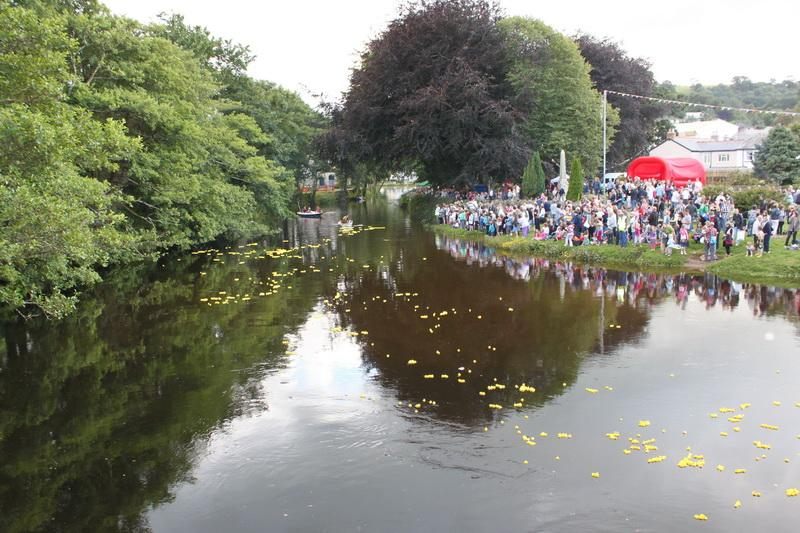 2012 Lostwithiel Carnival Week - Duck Race (10)