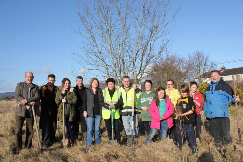 Peace Forest Ireland - The planters from Dundalk Tidy Towns, Louth County Council and the local Seacrest Manor estate.