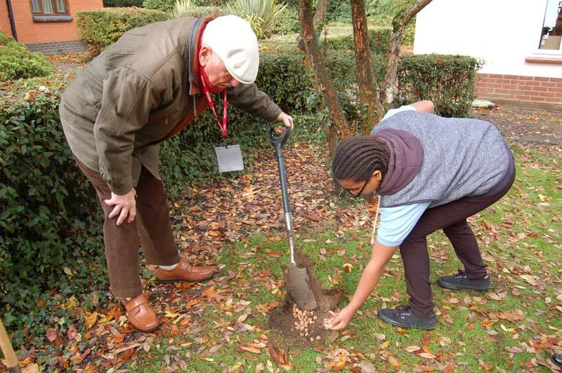 Growing Together to End Polio Now - Planting the corms