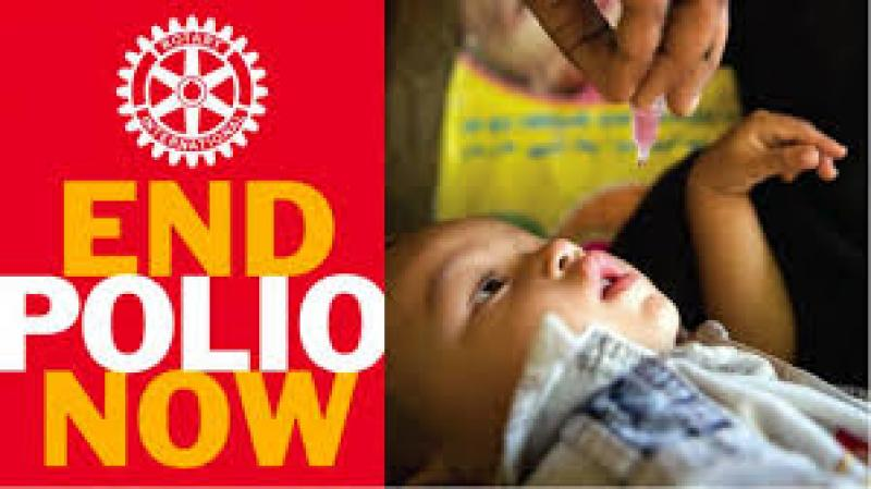 Afternoon Tea Walk for End Polio Now - End Polio Now Image