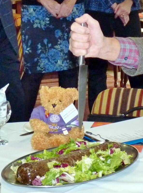 Fred Bear raising awareness and funds to end polio - Oooooh! that skean dhu a bit too close to my paw for my liking!