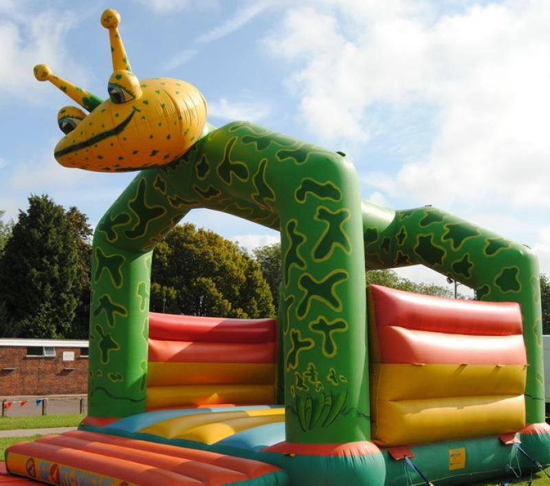 Frog Bouncy Castle