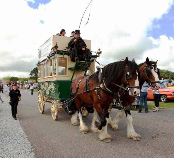WHEELS 2014 REPORT & PICTURES - Lizard Shire Stallions