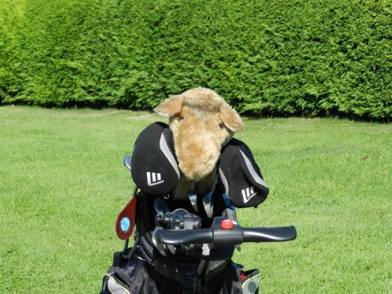 Charity Golf Day ~ Selection of Event Photos - Golf Day 2015 21