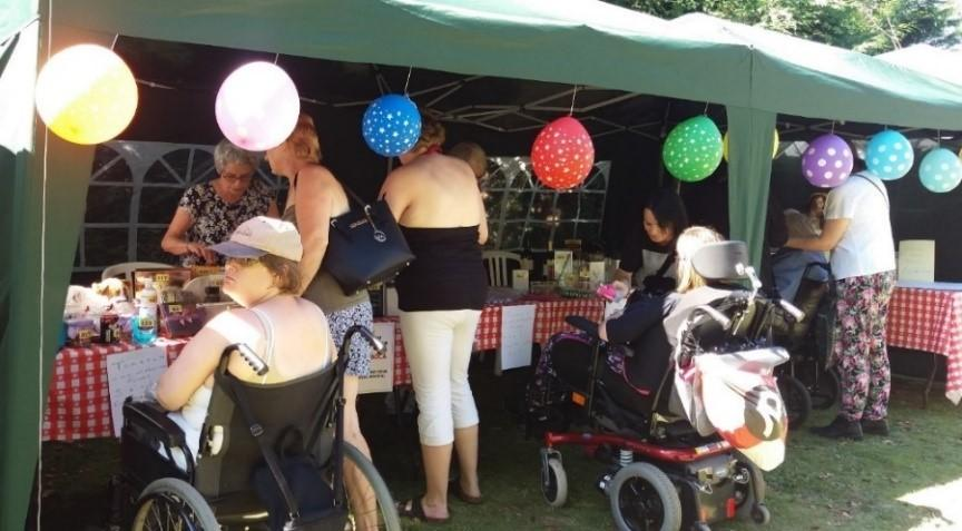 Community and Projects Committee - Didcot Hospitals Fete