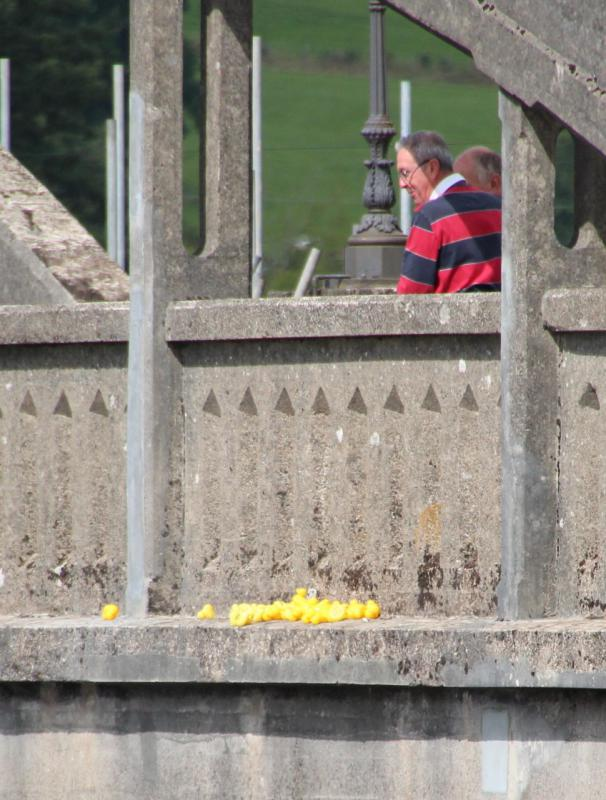 Kirkcudbright Rotary Duck Race - Houston - we have a problem 1