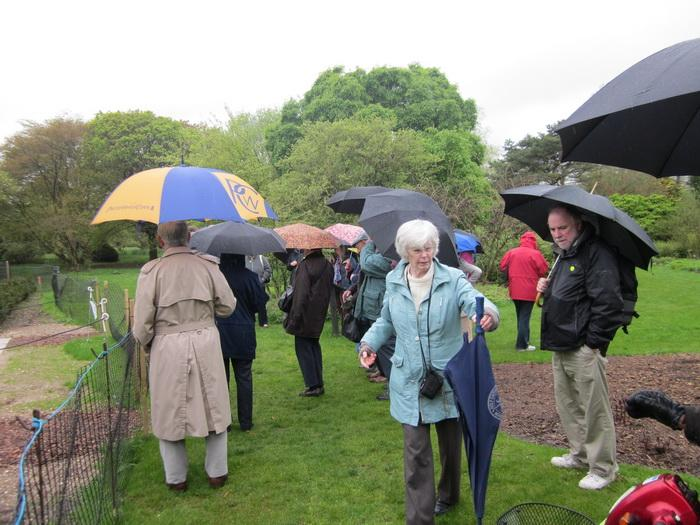 Visit to Hillier Garden, Romsey in May 2012 -