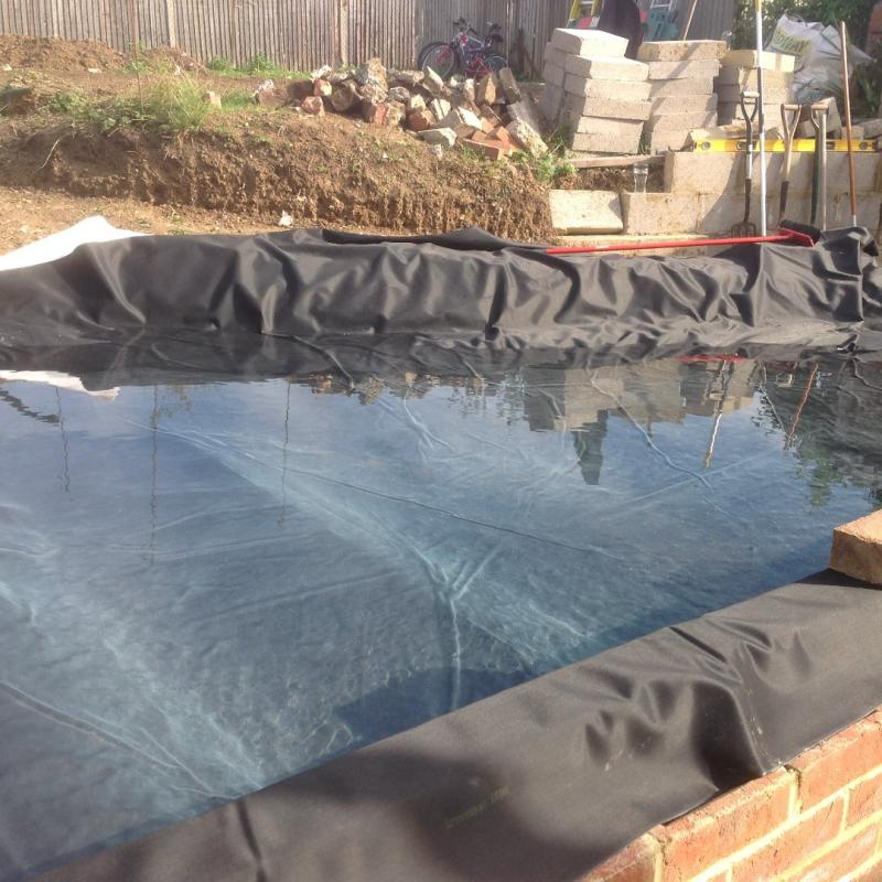 11th Sept 2015 - today is pond day ! - nearly there!