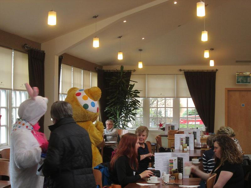 Children in Need 2014 - At the Teddy Bears' Picnic at CYP