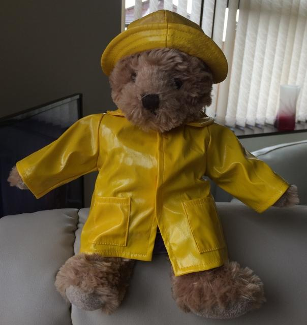 Reg the Roving Rotarian - Come rain or shine he's ready!