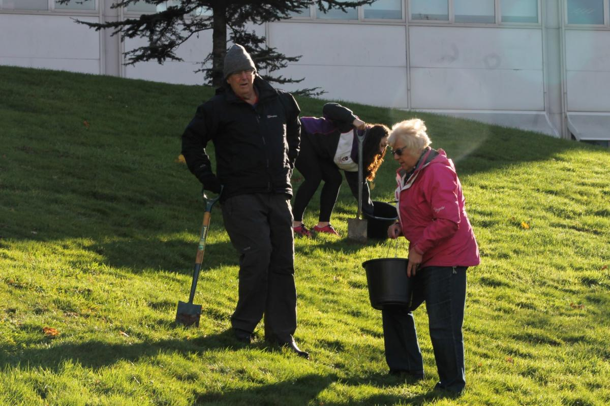 End Polio Campaign - Crocus Planting - IMG 1525