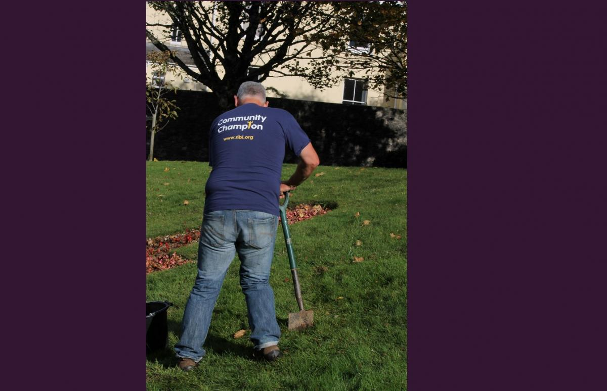 End Polio Campaign - Crocus Planting - IMG 1534a(1)