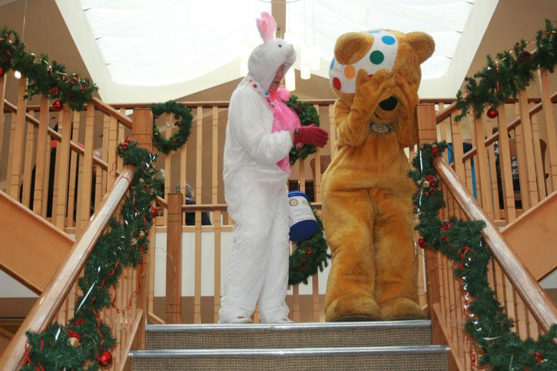 Children in Need 2014 - I told you, bears don't do stairs