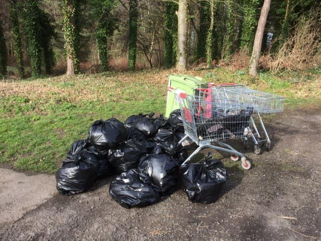 'Princess Anne Park Clean Up' -