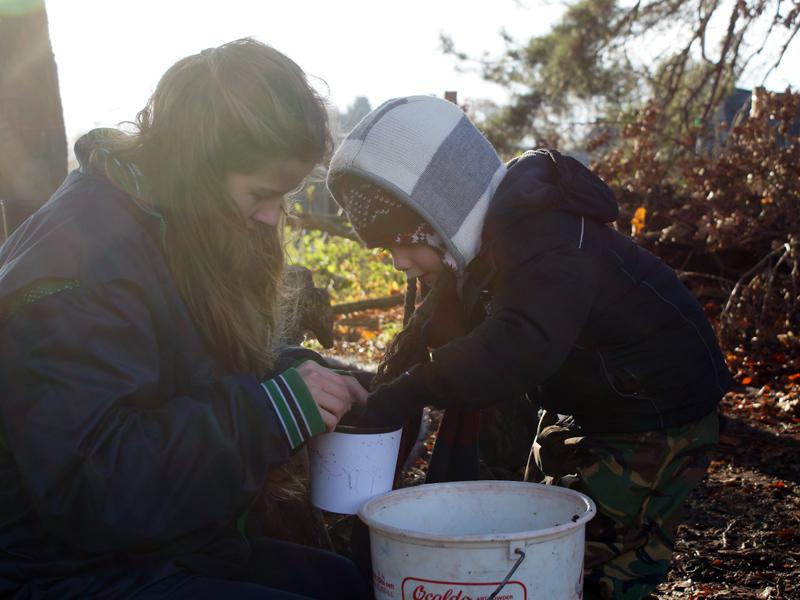 Interact Help Bellan House Pupils Plant Crocus #endpolionow - Reception in Forest School