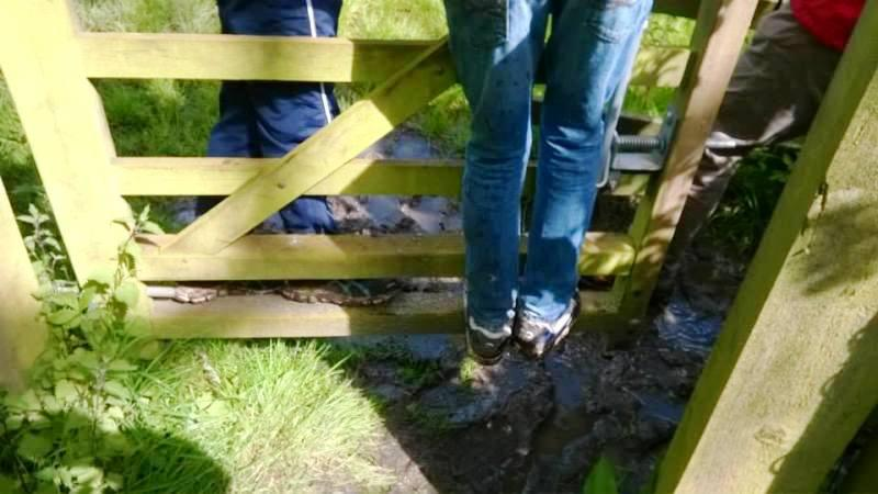 Sponsored walk 2014 - Hitching a ride over the mud