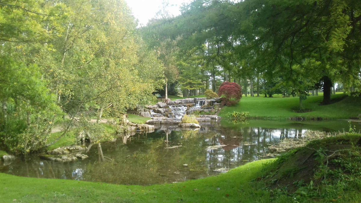 Visit to the National Stud and Japanese Gardens -