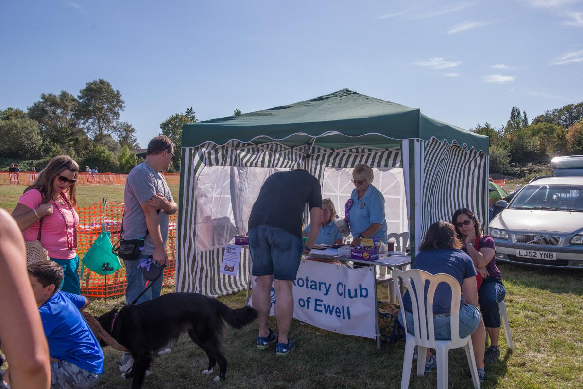 Epsom and Ewell Community Fayre - Photo by Oana.Photographer London