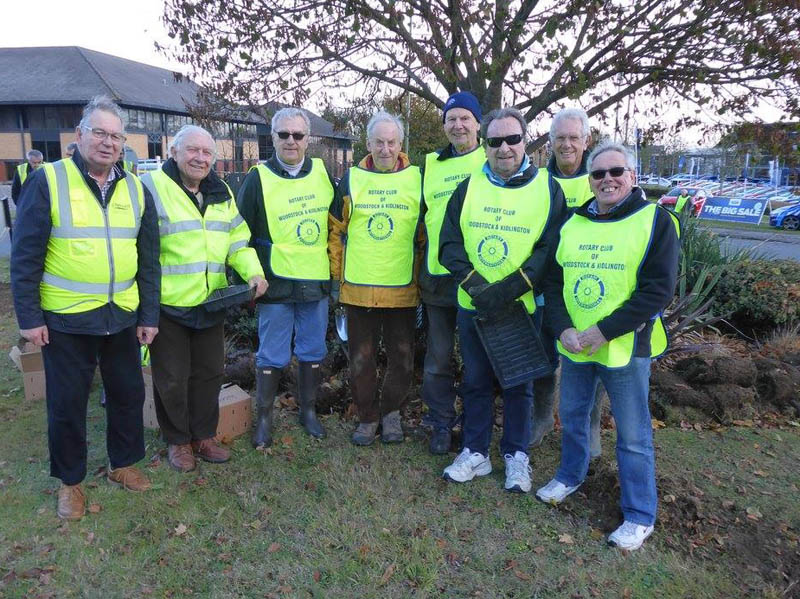 Growing Together to End Polio Now - The A team ready to plant 16,000 corms, sponsored by Cherwell in Bloom, on the Langford Lane roundabout