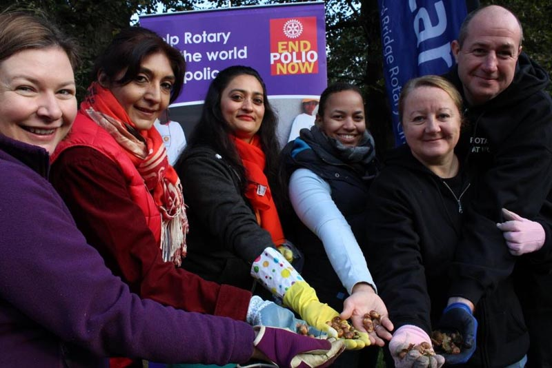 Growing Together to End Polio Now - Ready to paint the park Purple4Polio with 5,000 corms