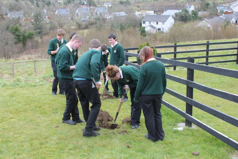 Peace Forest Ireland - Pupils of St Clare's Comprehensive School planting oak trees at Benbo Heights