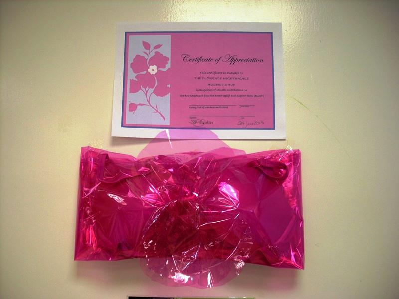 BUST -  help women in the 3rd world and breast cancer research. - Order of Pink Bra awarded for meritorious collecting
