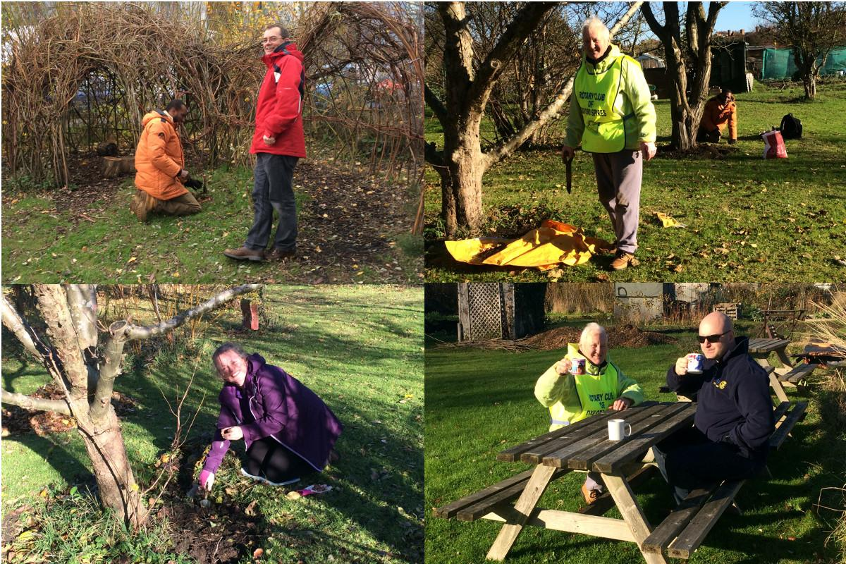 Growing Together to End Polio Now - Members of Oxford Spires Rotary Club planting at Restore's sites: the Cowley Road garden and the Elder Stubbs allotment