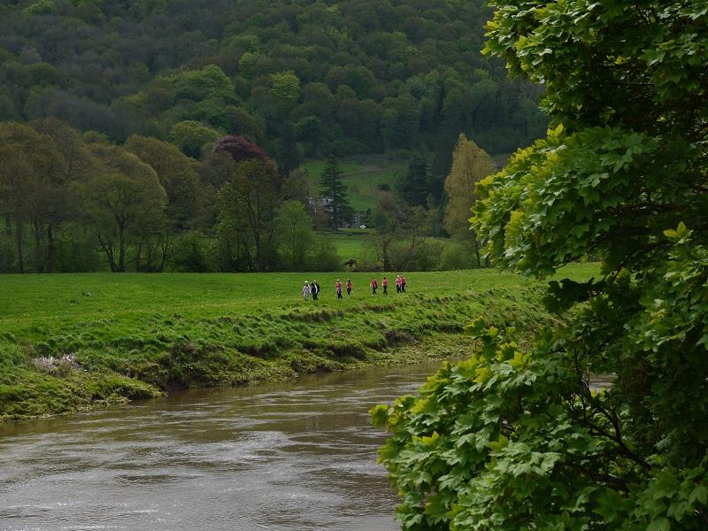 The Wye Valley Walk. May 2012 - P1000637 5