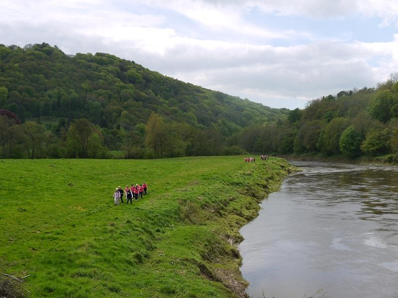 The Wye Valley Walk. May 2012 - P1000639 5