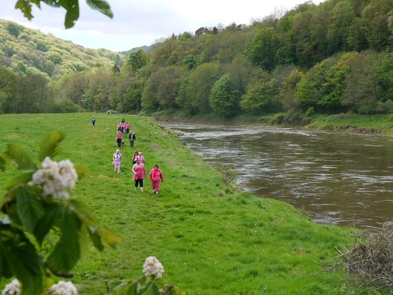 The Wye Valley Walk. May 2012 - P1000642 3