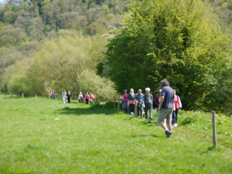 The Wye Valley Walk. May 2012 - P1000670 4