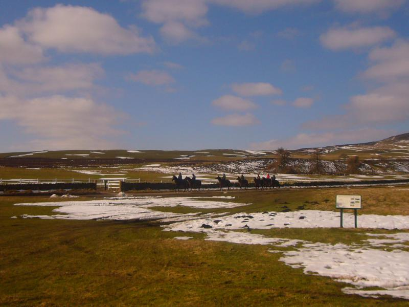 Wensleydale Wander 2013 Report - Snow at the Rubbing House on Middleham High Moor